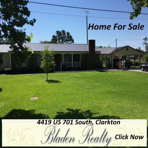 4419-us-701-south-bladen-realty